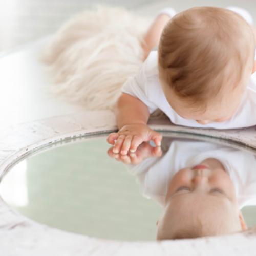 v-ogledalu-zivljenja
